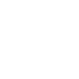 CZ Capital Group White Cropped Logo